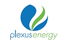 plexus energy blog